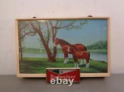 Rare VTG 1950's BUDWEISER King Of Beers Lighted Sign Clydesdales Horses 20 x 14