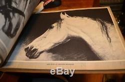 Vintage Portraitures of Horses by George Ford Morris 1952 RARE